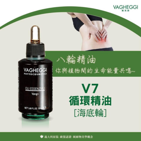 V7海底輪-循環精油